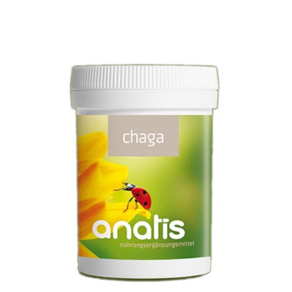 Anatis Chaga Pilz Dose ganzheitliche Gesundheit