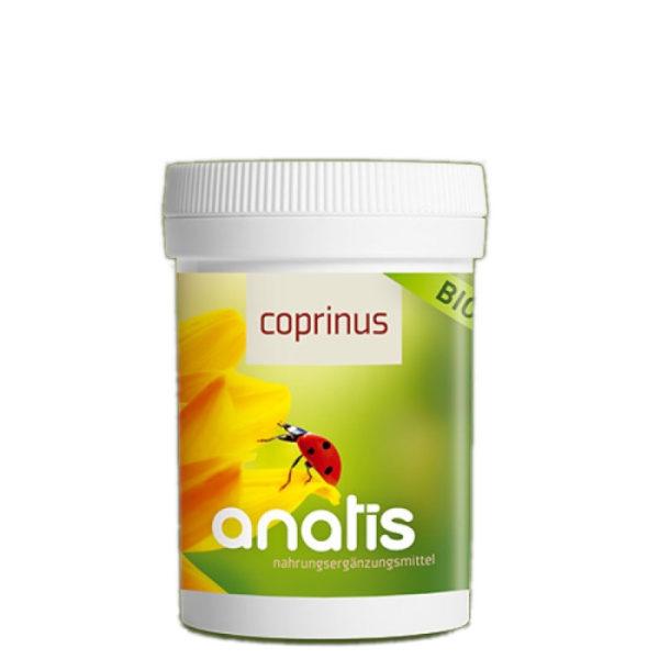 Anatis Corprinus Pilz dose ganzheitliche Gesundheit
