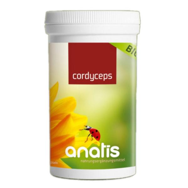 Anatis Cordyceps Pilz Dose ganzheitliche Gesundheit