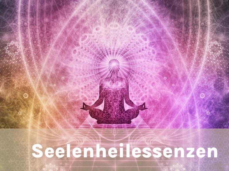 Seele Essenz Andreas Resch
