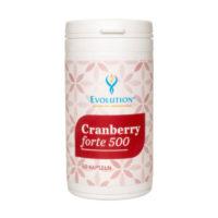 <b>Evolution </b>Cranberry forte 500