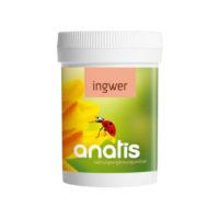 <b>Anatis </b>Ingwer