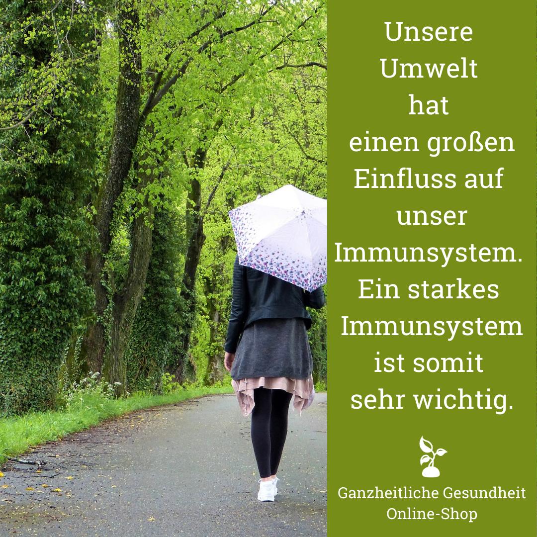 Read more about the article Stärke dein Immunsystem