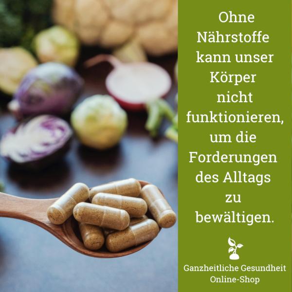 Read more about the article Nährstoffe sind unentbehrlich für unseren Körper.
