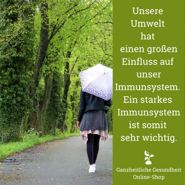 ganzheitliche_gesundheit_immunsystem_umwelteinwirkung